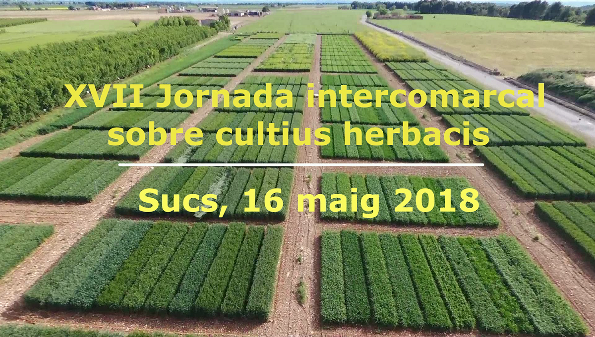 XVII Jornada intercomarcal sobre cultius herbacis