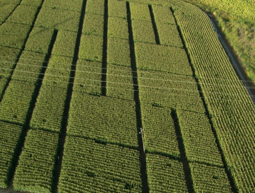 Más que una simple imagen aérea: Oportunidades y desafíos en teledetección
