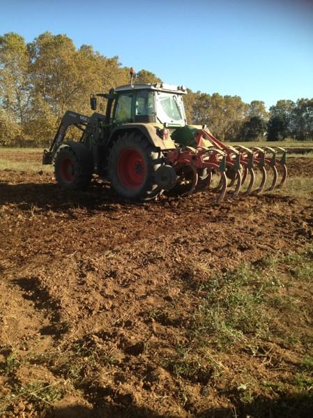 PRÀCTIQUES DE L'AGRICULTURA DE CONSERVACIÓ EN ELS CULTIUS HERBACIS EXTENSIUS ECOLÒGICS DE SECÀ