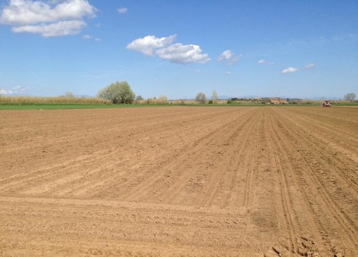 Control de males herbes en pre-emergència del blat de moro