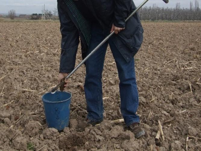 Maneig del  fòsfor  en l'ús de dejeccions ramaderes