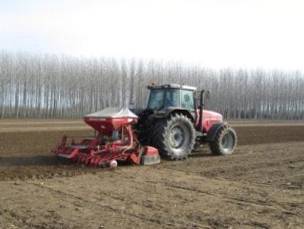Ajustar la fertilització mineral en fons del cereal d'hivern